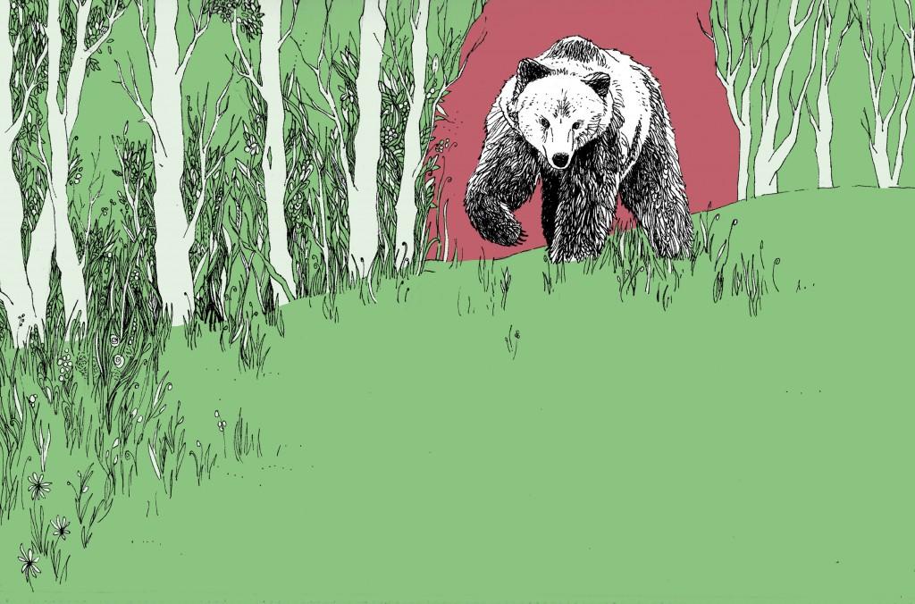 illustrazione1